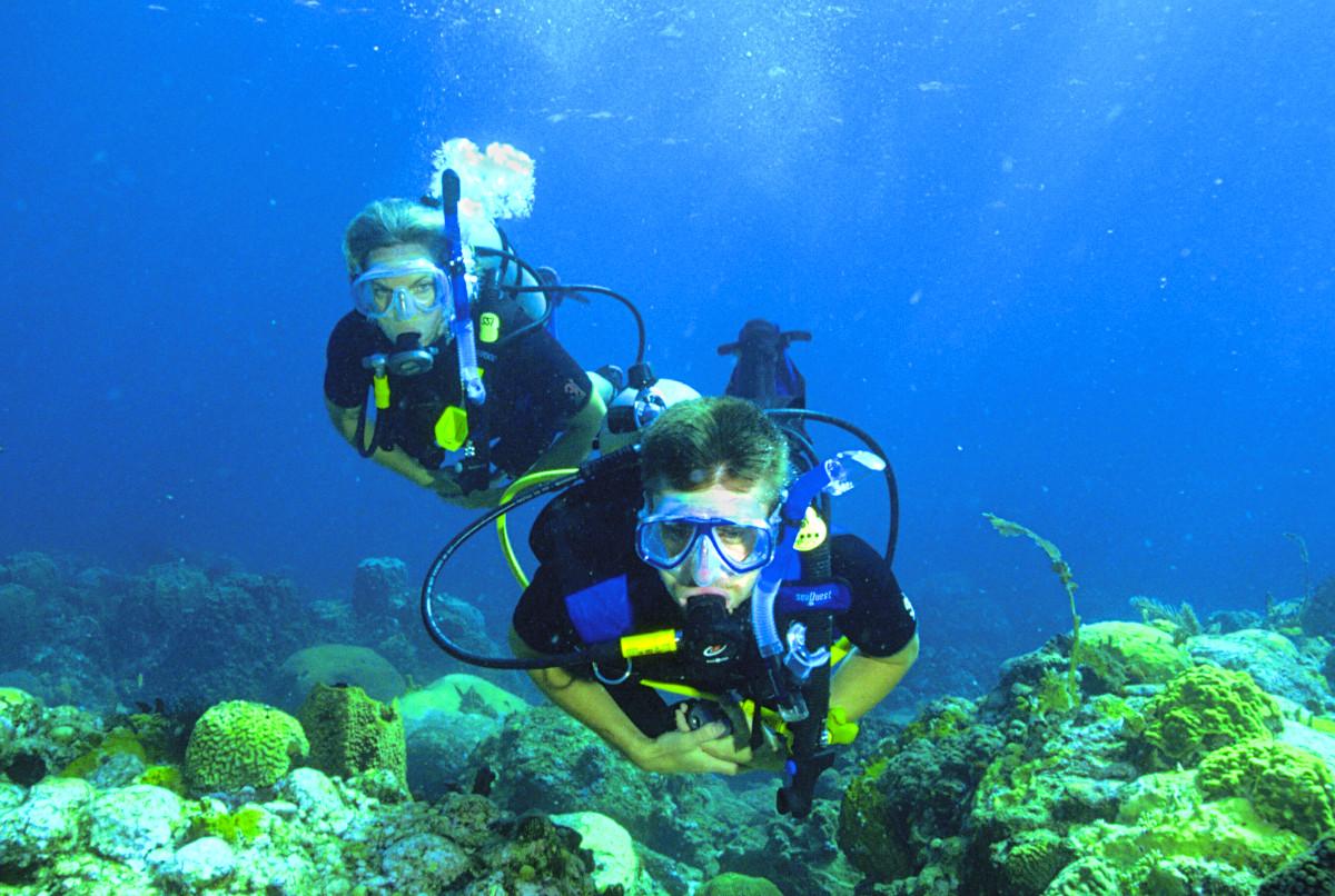 Dive Professional